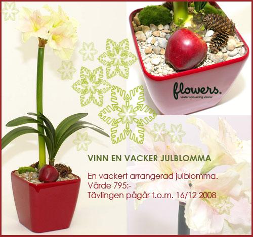 flowers borås