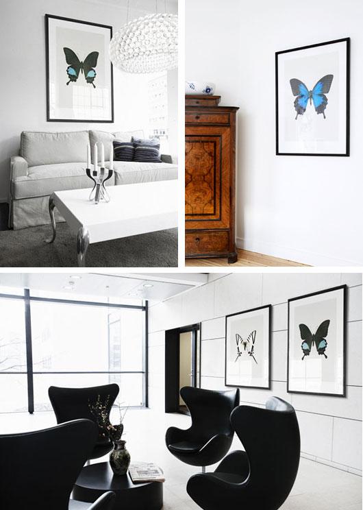 Fjärilar på väggen Hemtrender